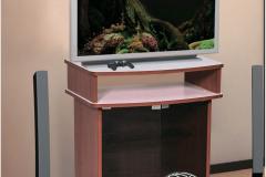 TV (без бара)